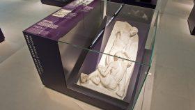 Display Case Cement Model