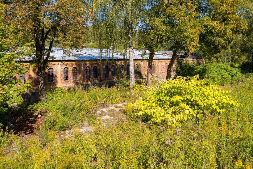Wolkenburg 09 viertlboeck