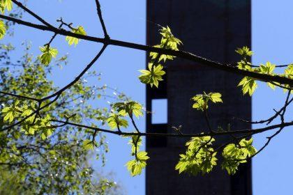 Presse flossenbuerg 09 klein
